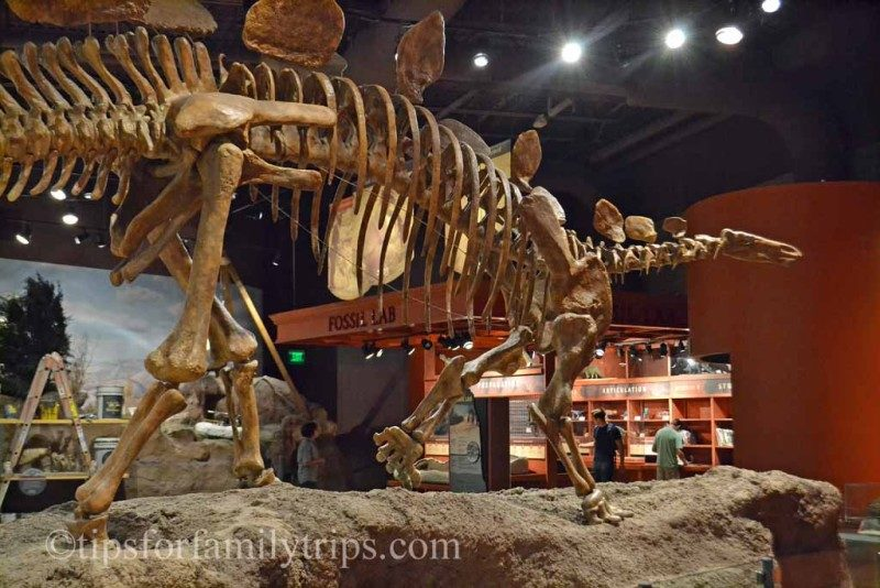 Tips for visiting the Utah Field House of Natural History | tipsforfamilytrips.com