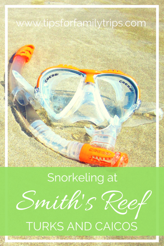 The DEFINITIVE guide to snorkeling at Smith's Reef in Turks and Caicos | tipsforfamilytrips | Caribbean | travel | vacation