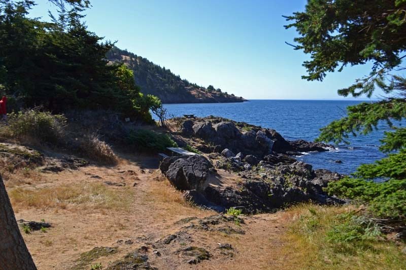 Tips for whale watching and more for families at Lime Kiln Point State Park on San Juan Island, Washington | tipsforfamilytrips.com | summer vacation | Pacific Northwest | orcas | killer whales