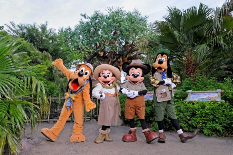 Tips for your FIRST Walt Disney World Trip. We've got tips for what to do, where to stay, Park Hopping, FastPass+ and MagicBands! | tipsforfamilytrips.com | Orlando, Florida | family vacation | summer vacation | spring break | Fast Pass | Disney hotels | Disney tips and tricks | Disney attractions | Disney tickets |