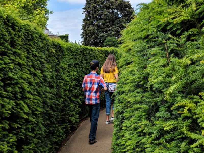 Hedge Maze at Hampton Court Palace